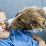 Chránia domáce zvieratá svojich majiteľov v ére COVID-19?